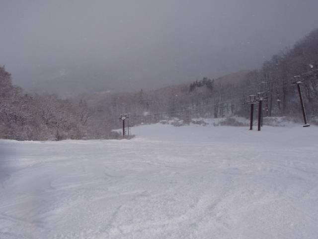 2008123109.jpg