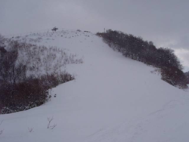 2008123115.jpg