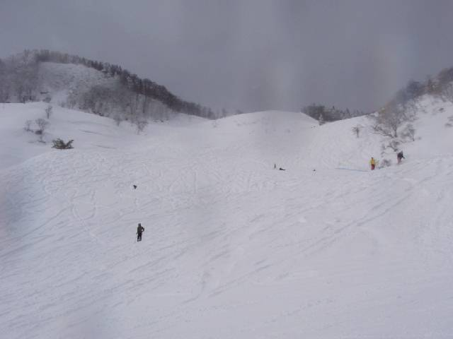 20090124a17.jpg