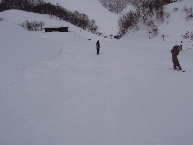 20090126a31.jpg