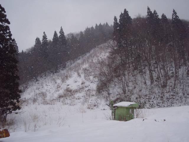 20090221b06.jpg