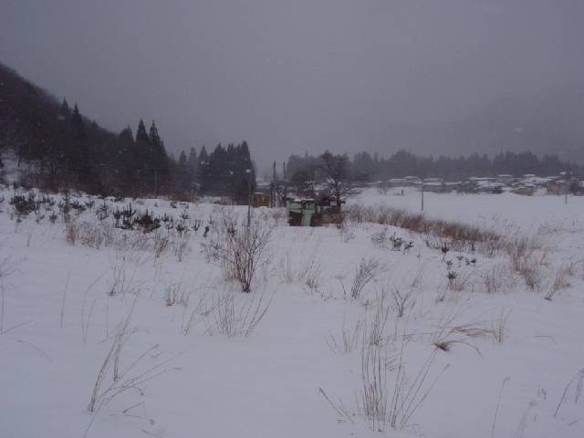 20090221b08.jpg