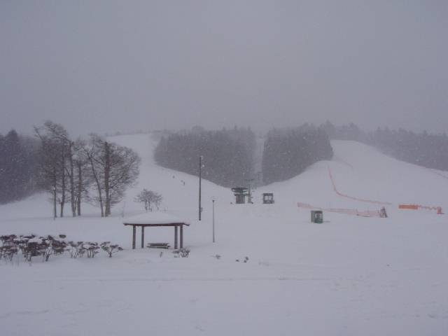 20090221c.jpg