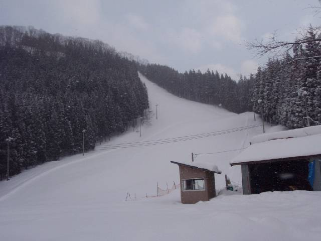 20090221f.jpg