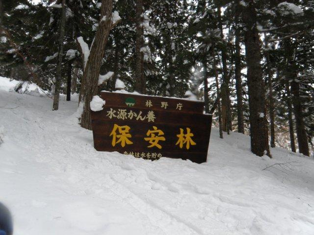 20090301b36.jpg