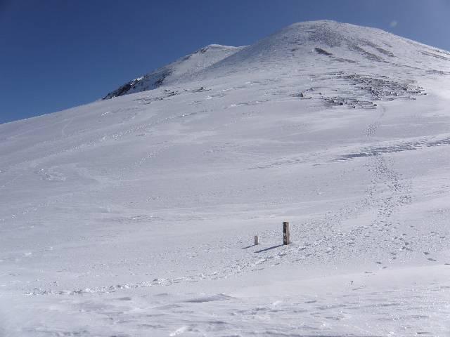 20090315.jpg
